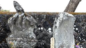 当信寺の青梅と真田大八の墓